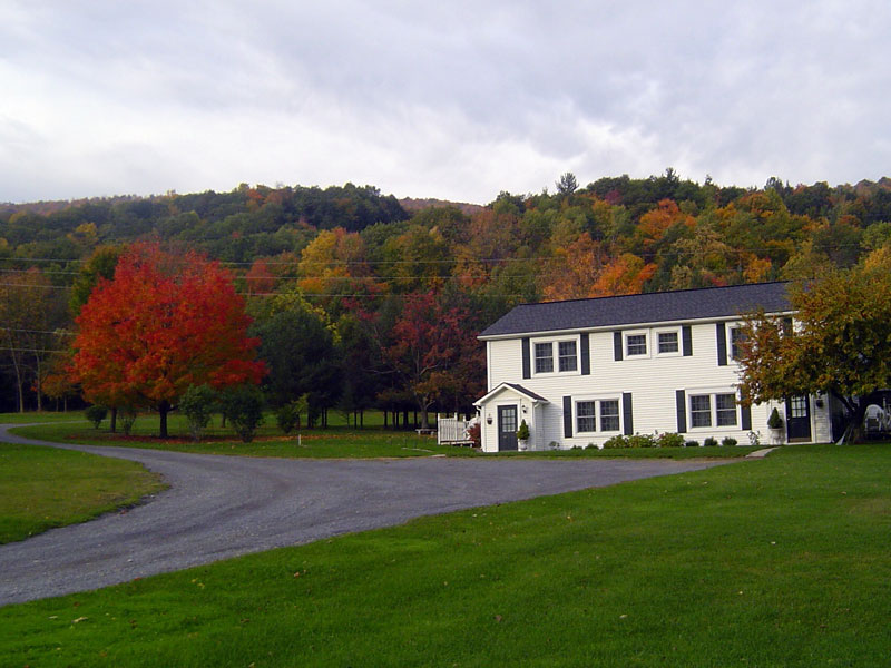 Fall in love with the Bristol Mountain foliage