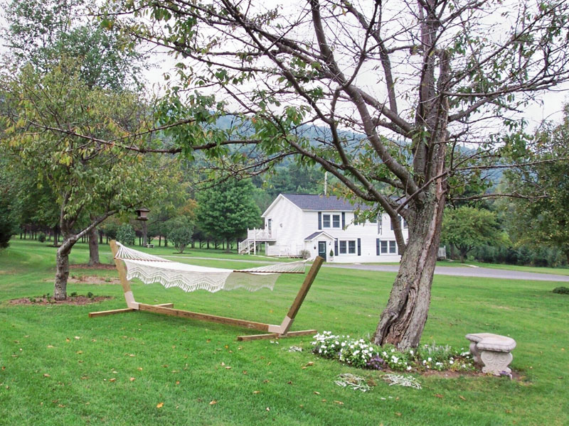 Hammock Outside of The Filigree Inn Bed and Breakfast in Finger Lakes Wine Country